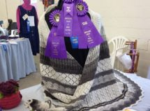 Best in Show, 2015 Skein & Garment Competition