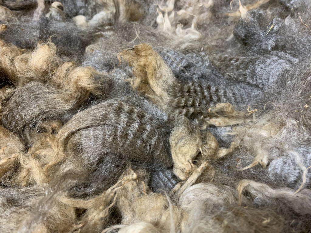 Perendale Wool